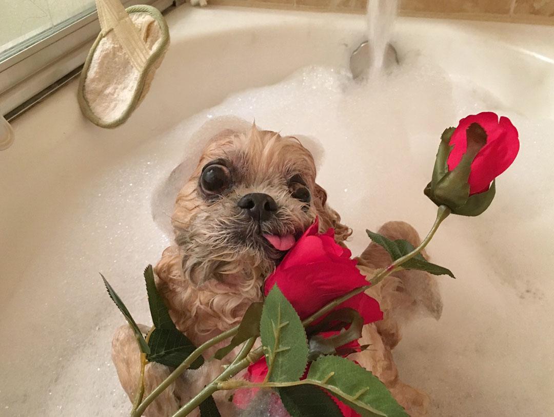 Marnie bañandose