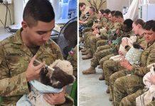 Soldados ayudan en su tiempo libre al cuidado de koalas