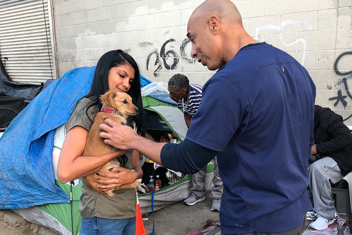 Veterinario atiende mascotas