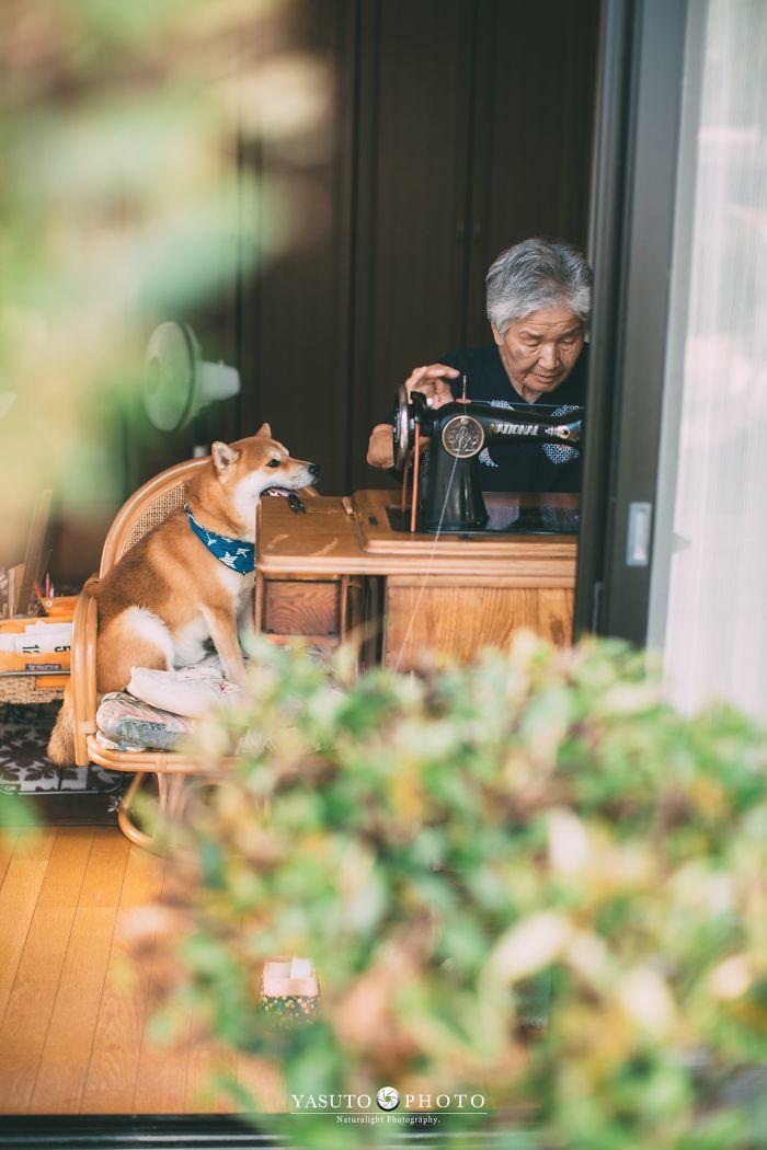 abuela en casa con su mascota