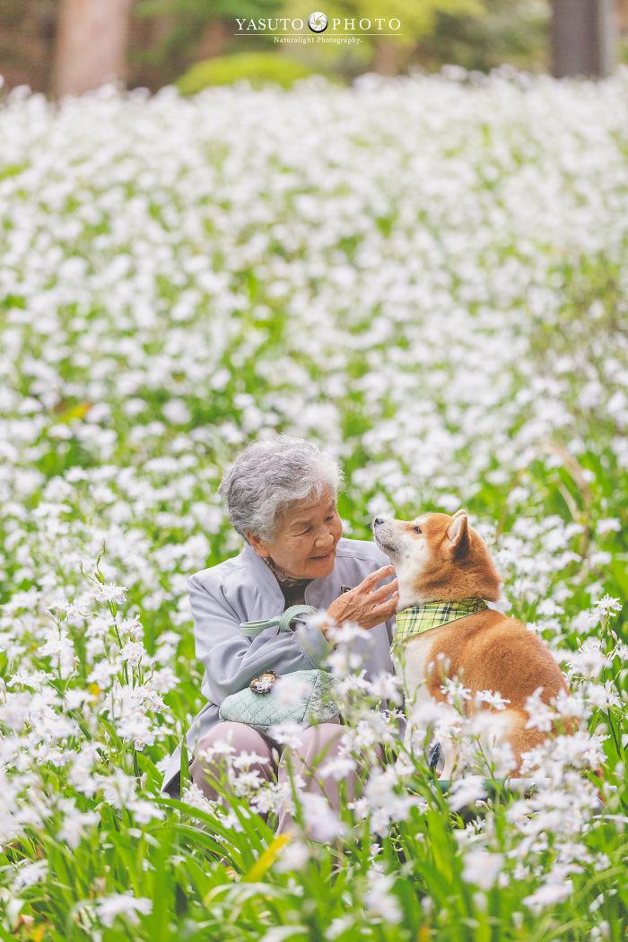 abuela y perro entre flores blancas