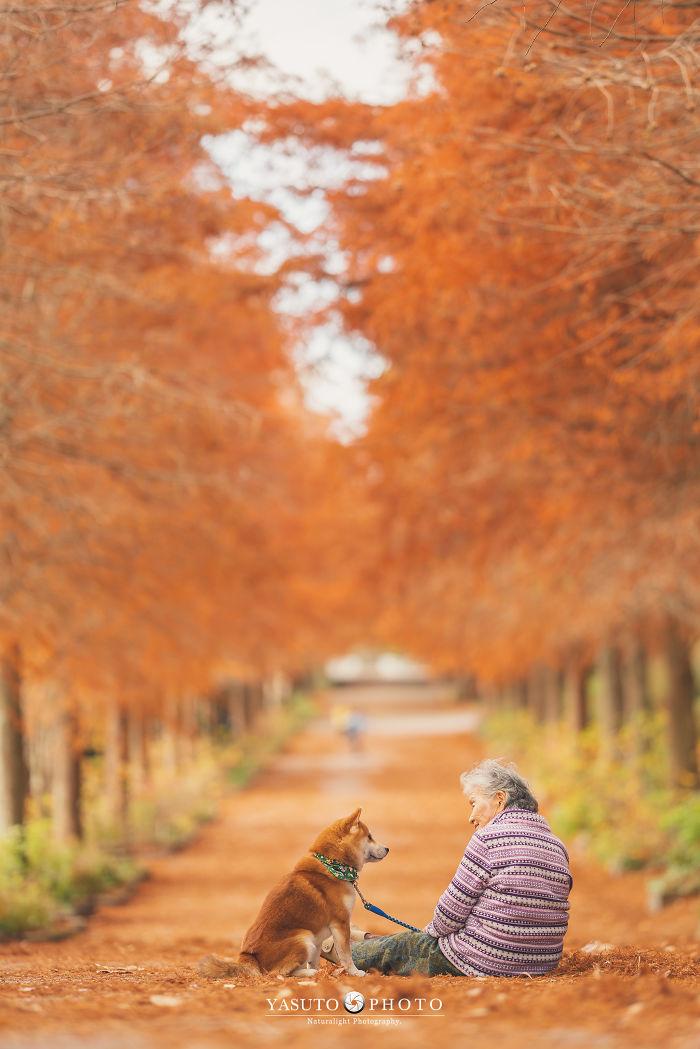abuela y su Shiba Inu en un camino