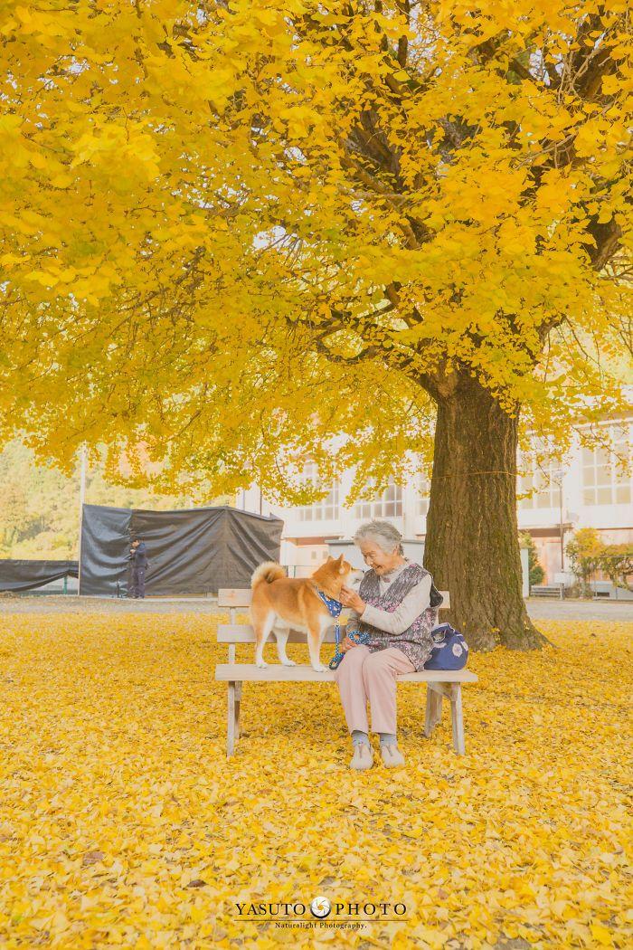 abuela y animal de compañía bajo árbol
