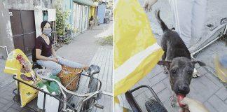 Mujer alimenta animales callejeros a pesar de tener poco dinero