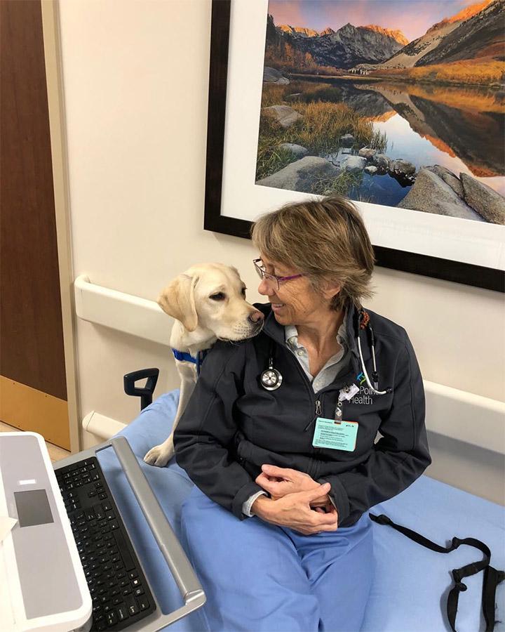 Perro de terapia con médico