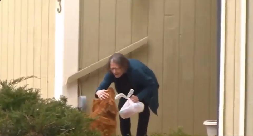 Perro lleva provisiones a mujer enferma
