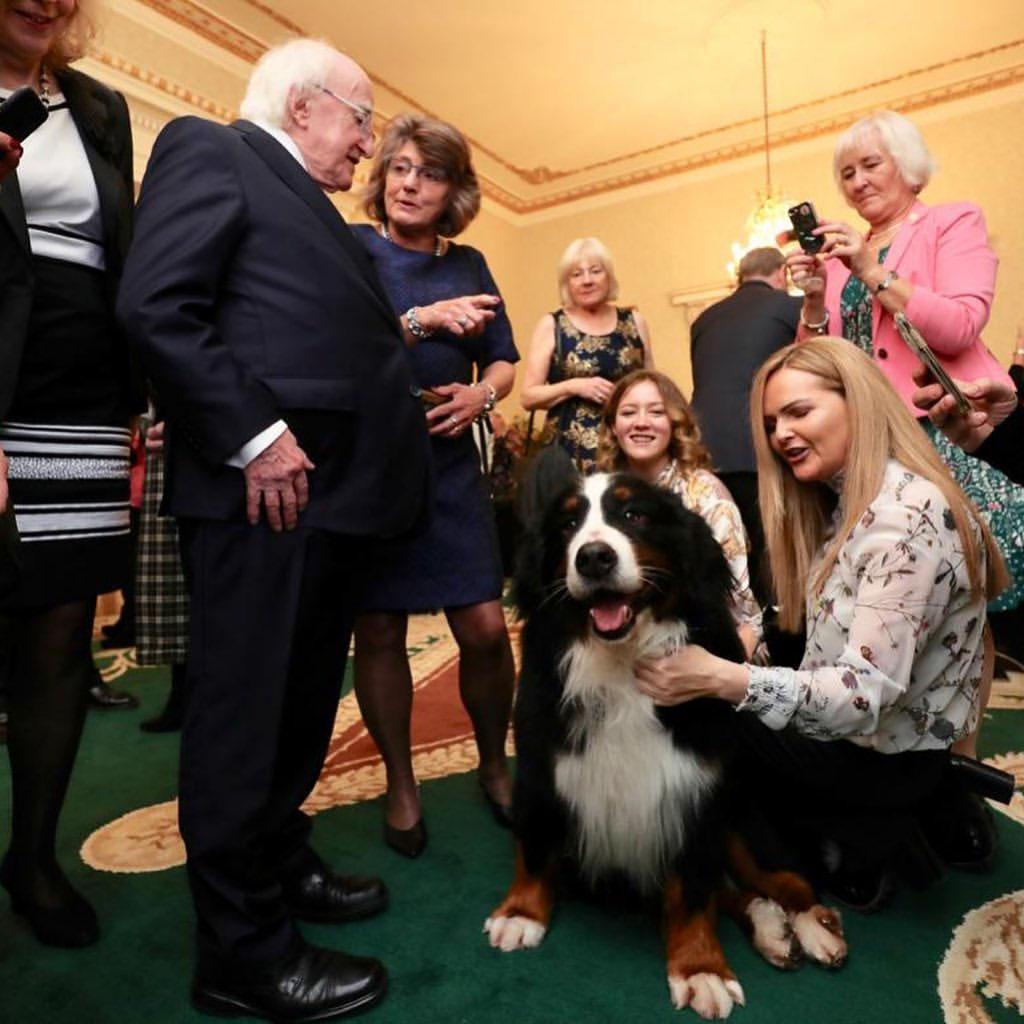 Perros del presidente comparte con la gente