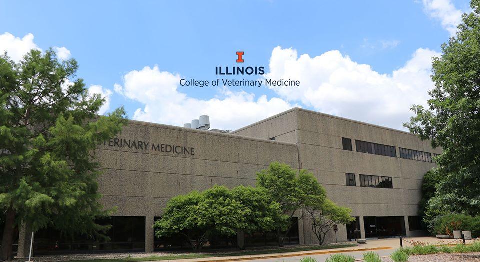 Universidad de Illinois