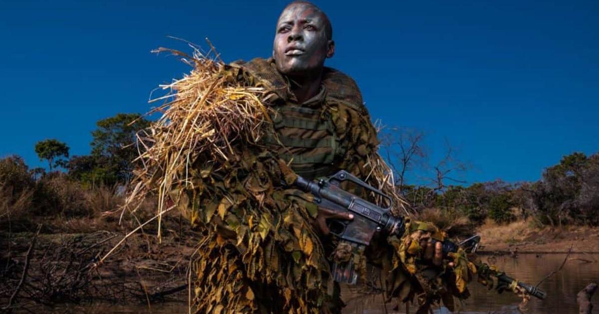 Valientes mujeres luchan contra la caza furtiva de elefantes en África