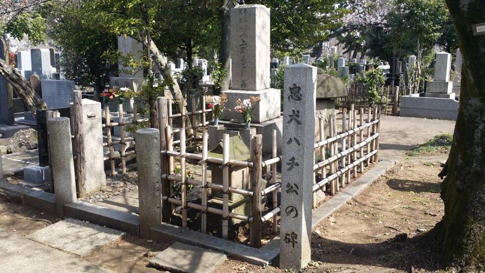 Cementerio de perro leal