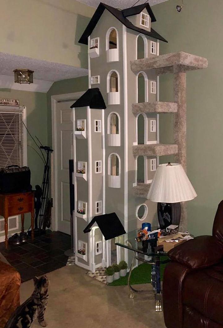 Hombre construye torres para gatos