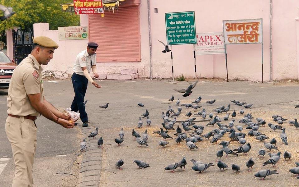 Policía alimenta a palomas