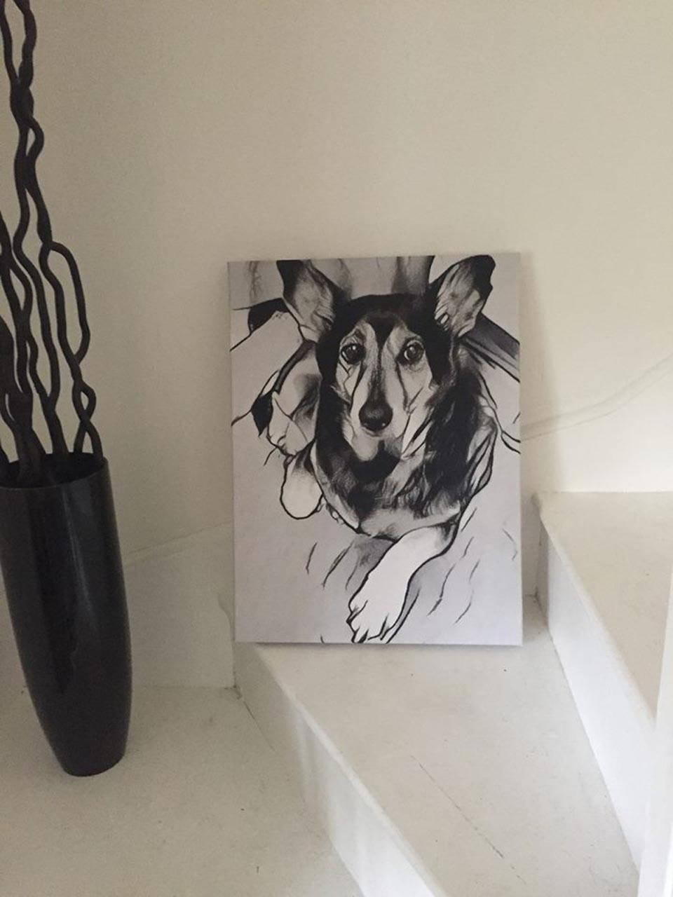 Retrato de perrito rescatado
