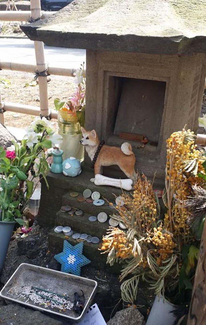 Tumba en el cementerio de perro leal