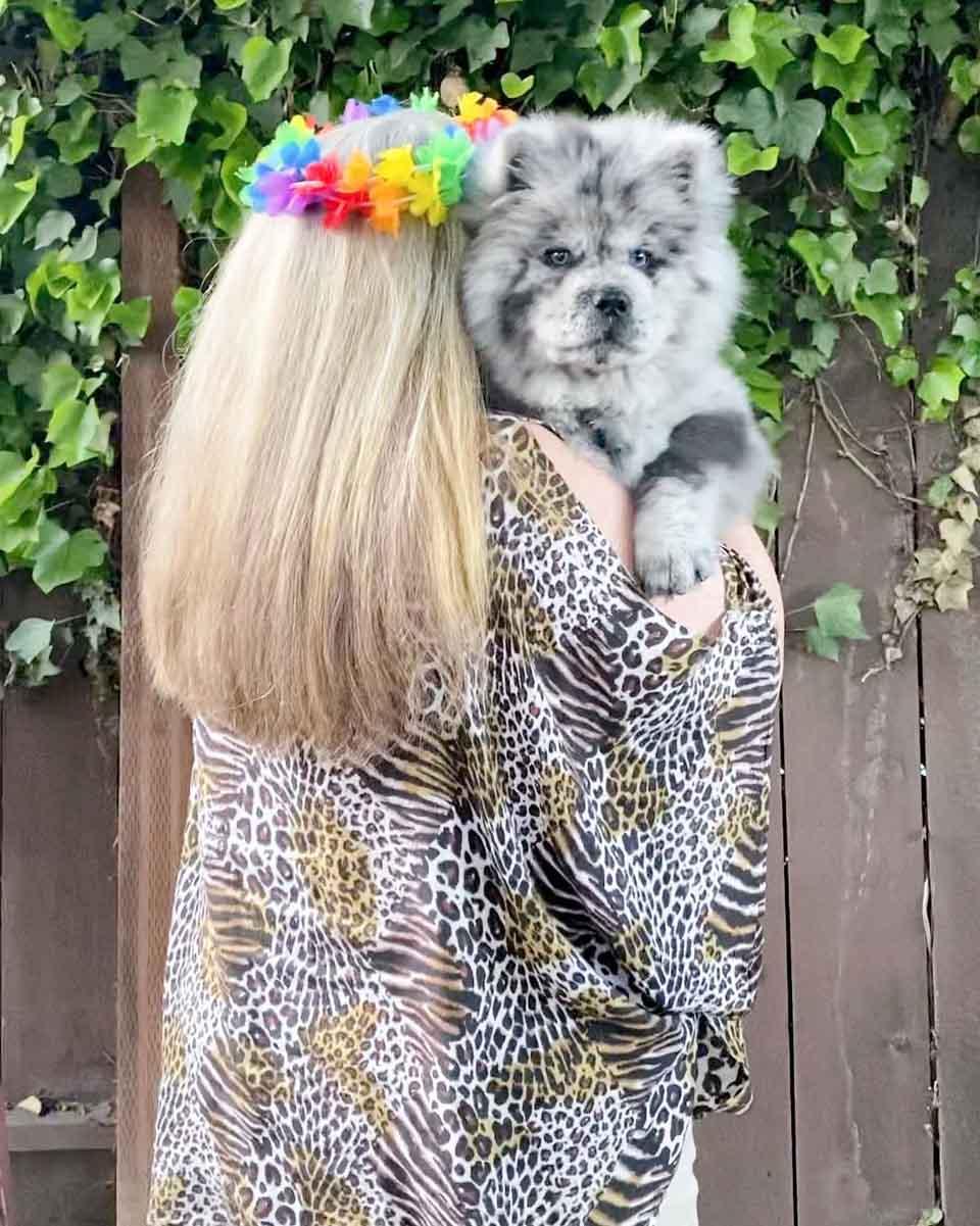 Mujer abraza a perrito adorable