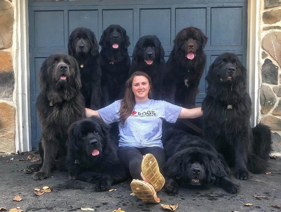 Mujer posa con sus 9 perros