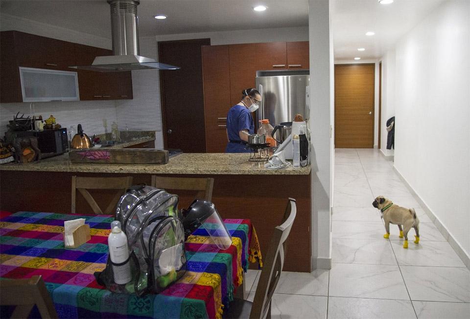Perro terapeuta casa