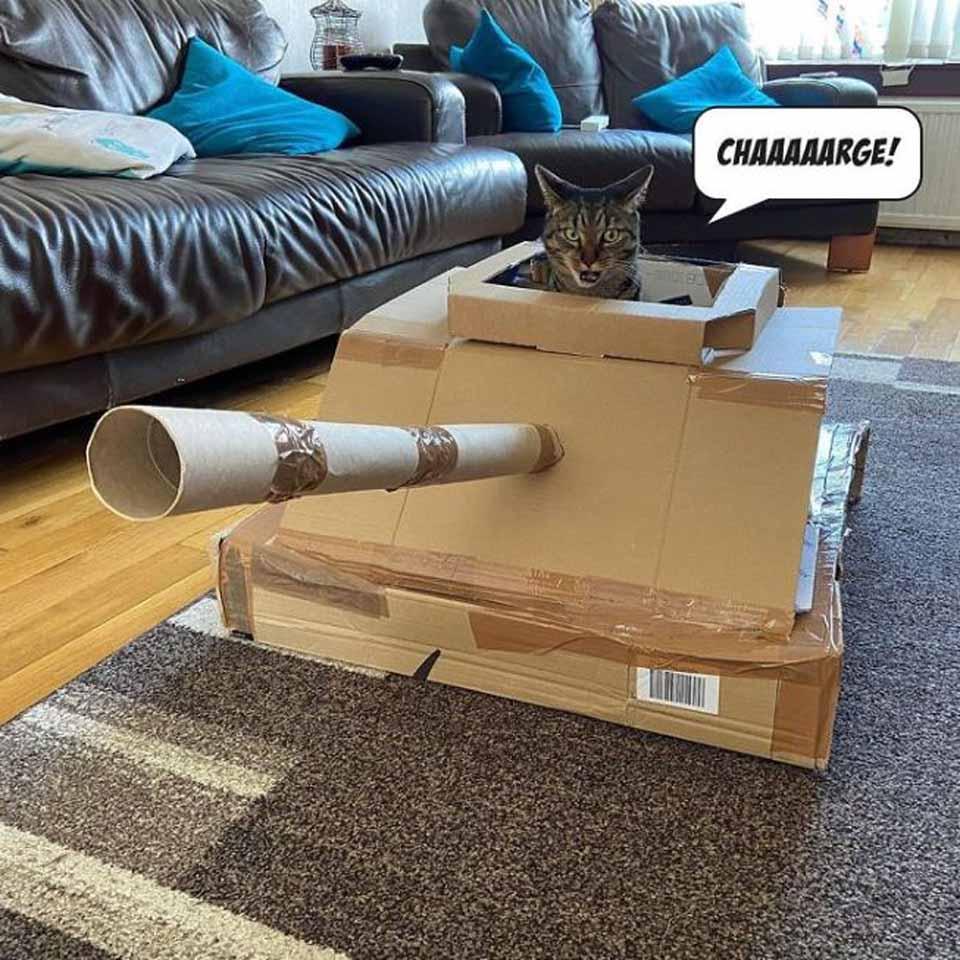 Tanque elaborado con cartón