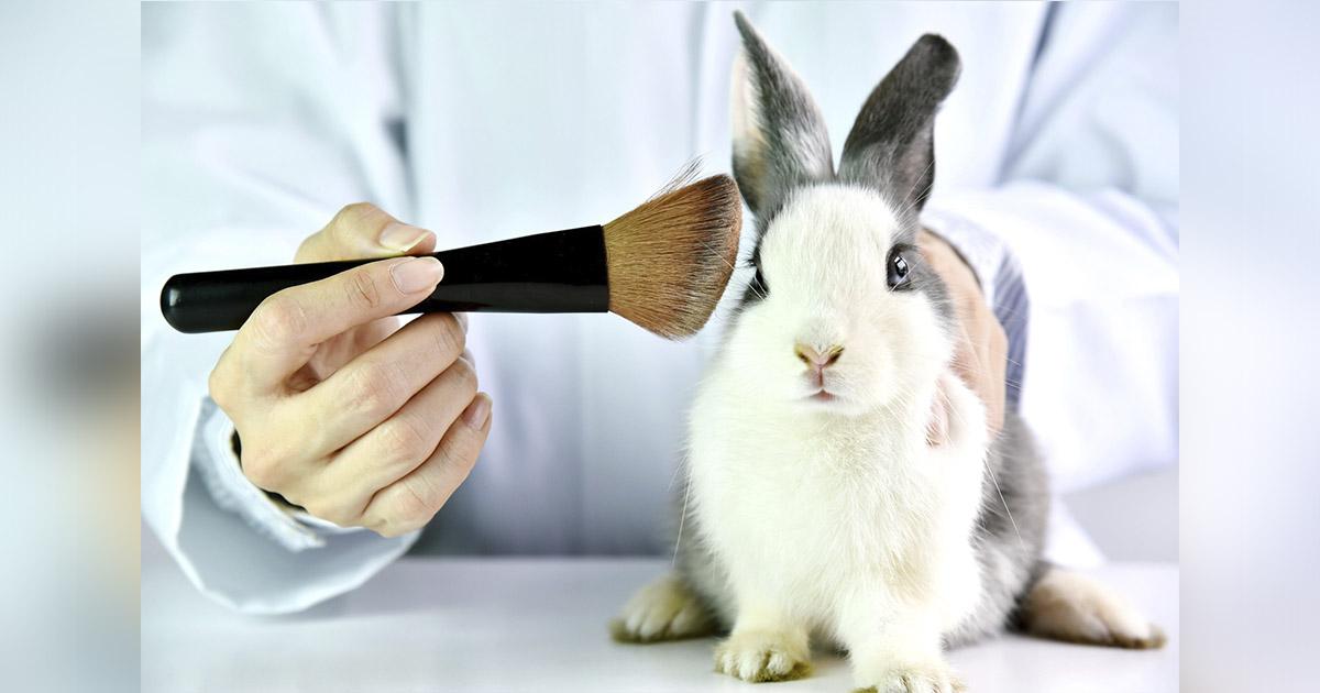 Colombia prohíbe testeo cosméticos animales