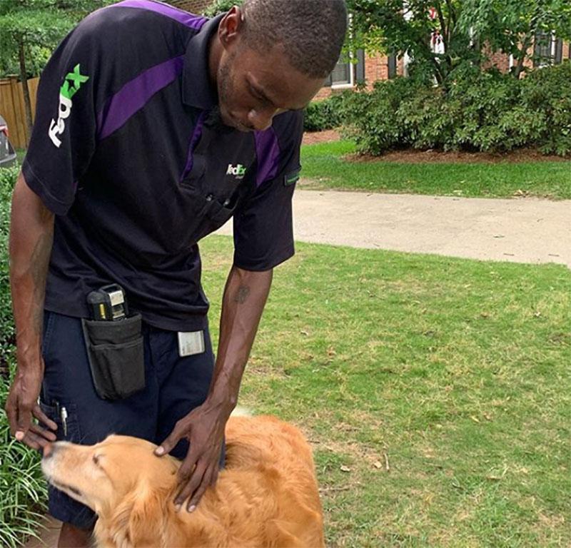 FedEx y perro
