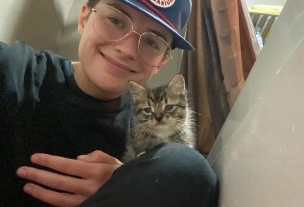 Gatito y Madre