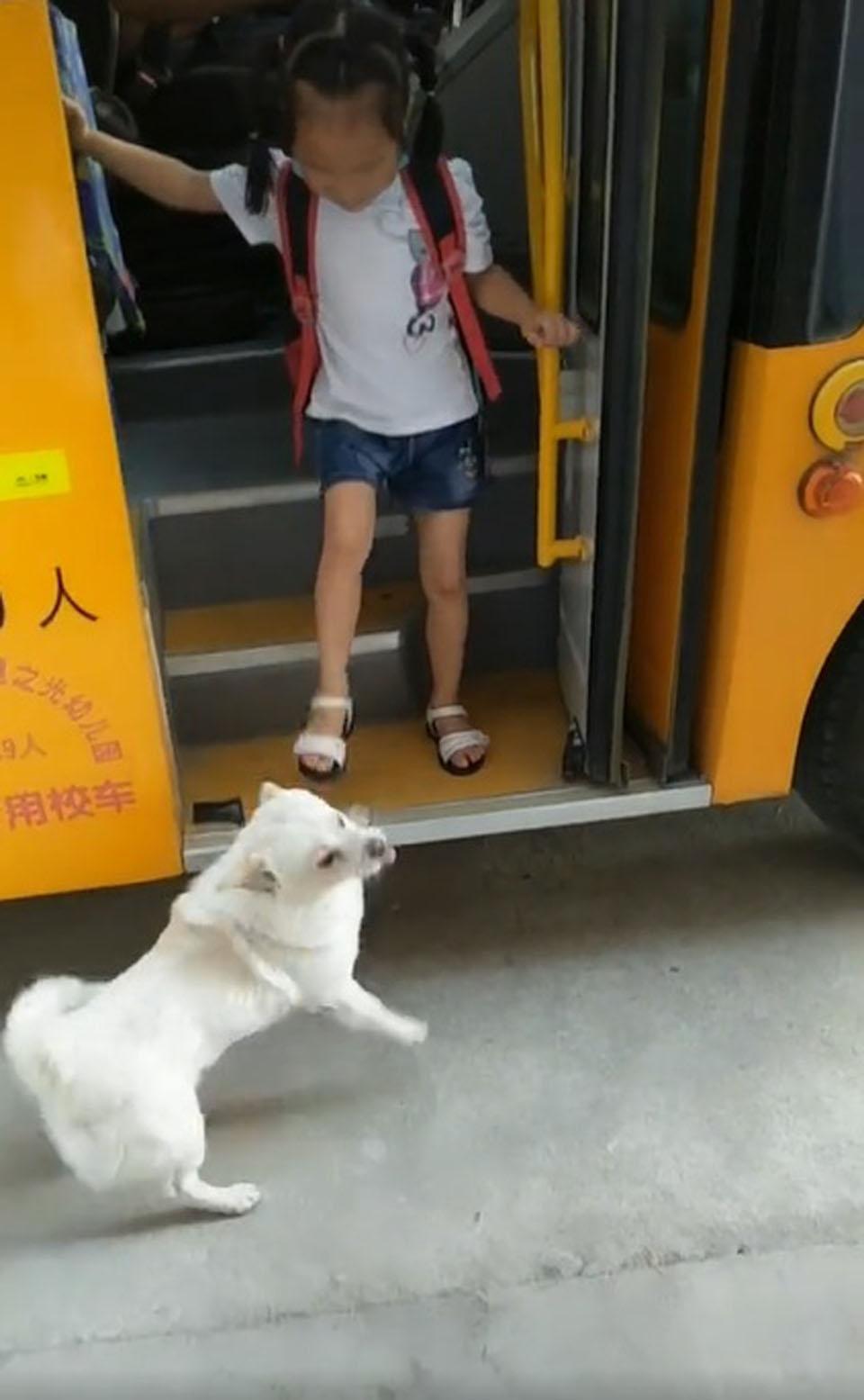 Niña se baja del autobús