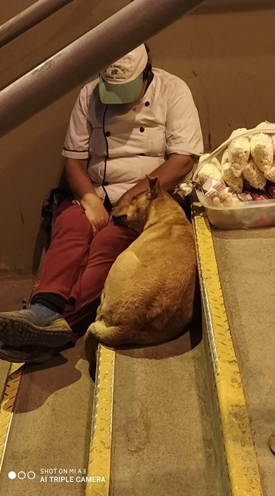 Vendedora ambulante y perrito