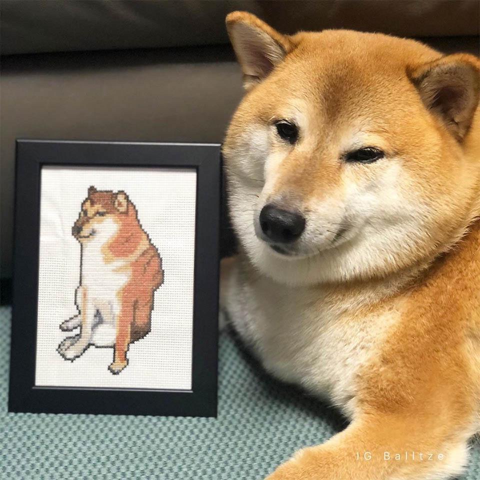 Cheems y su retrato