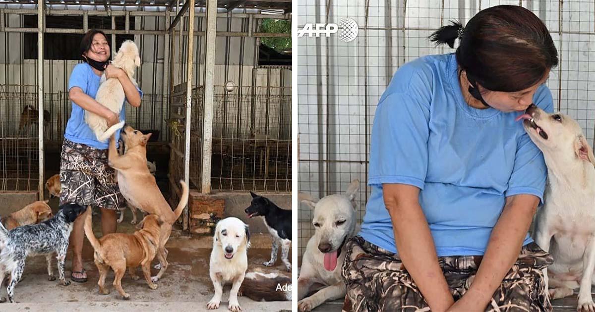 Doctora en Indonesia ha rescatado a más de 1000 perros sin hogar