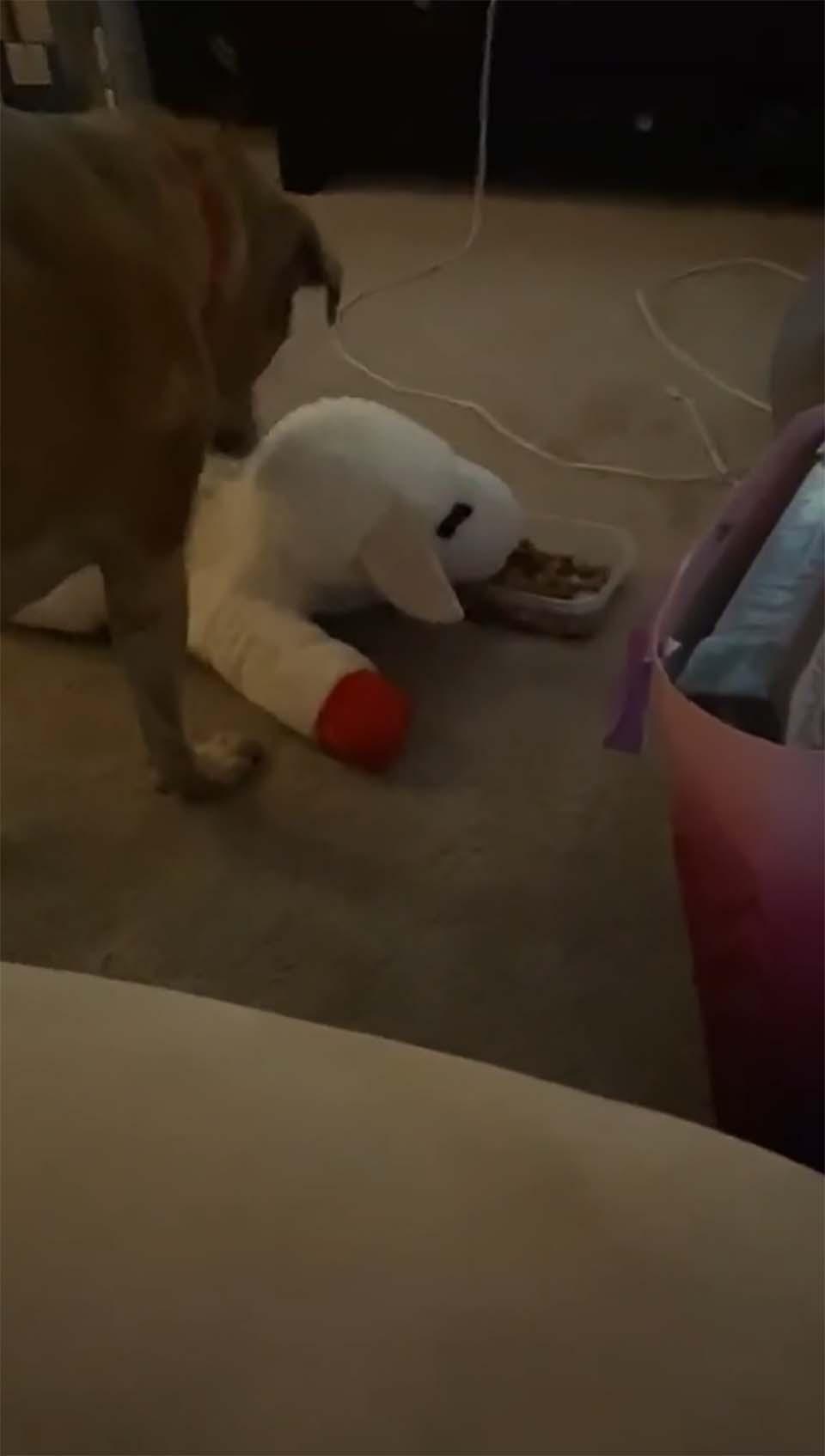Juguete de peluche
