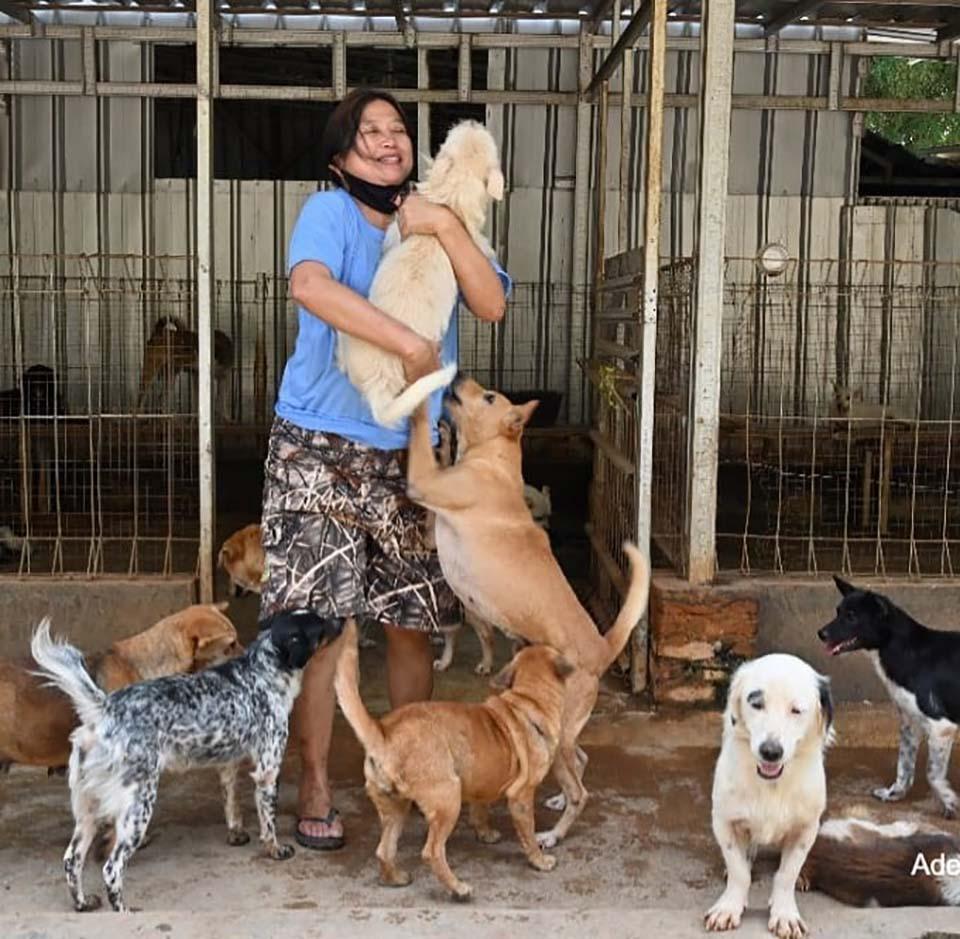 Mujer y perros