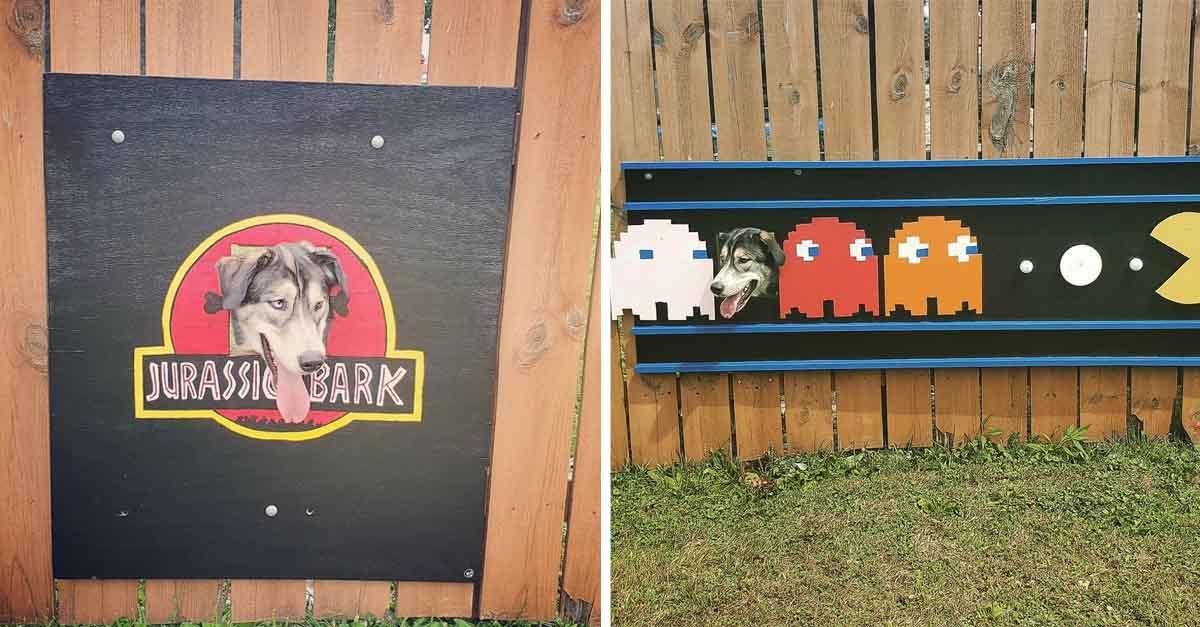 Familia decora agujero de la cerca para perro y entretener a los vecinos