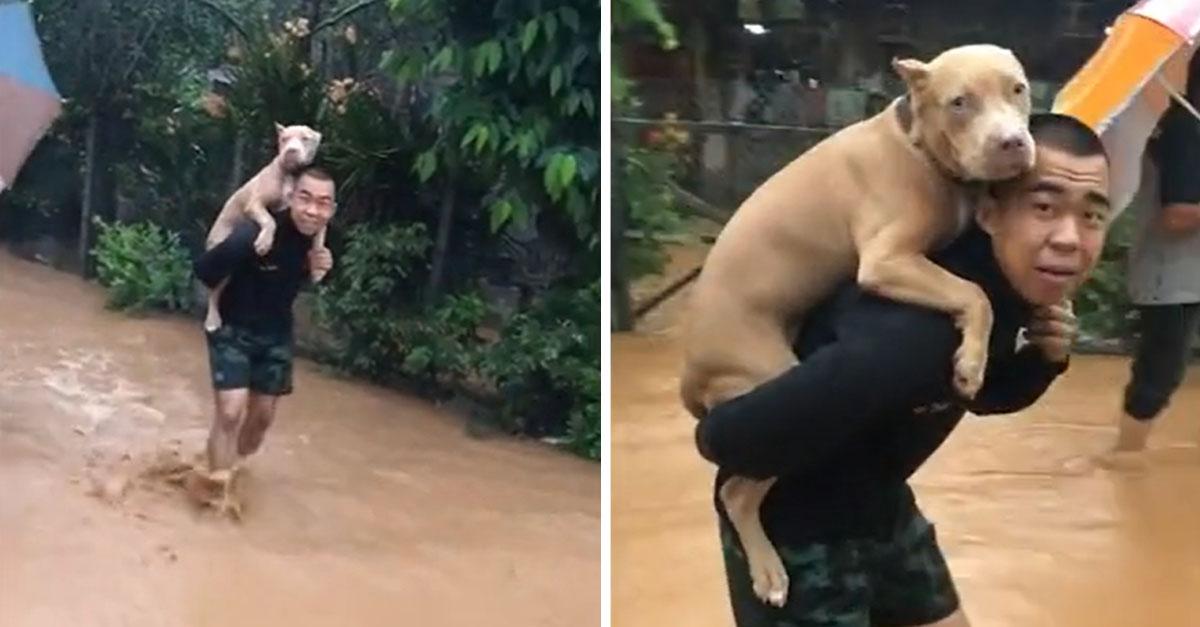 Hombre lleva a su perro para rescatarlo de las inundaciones