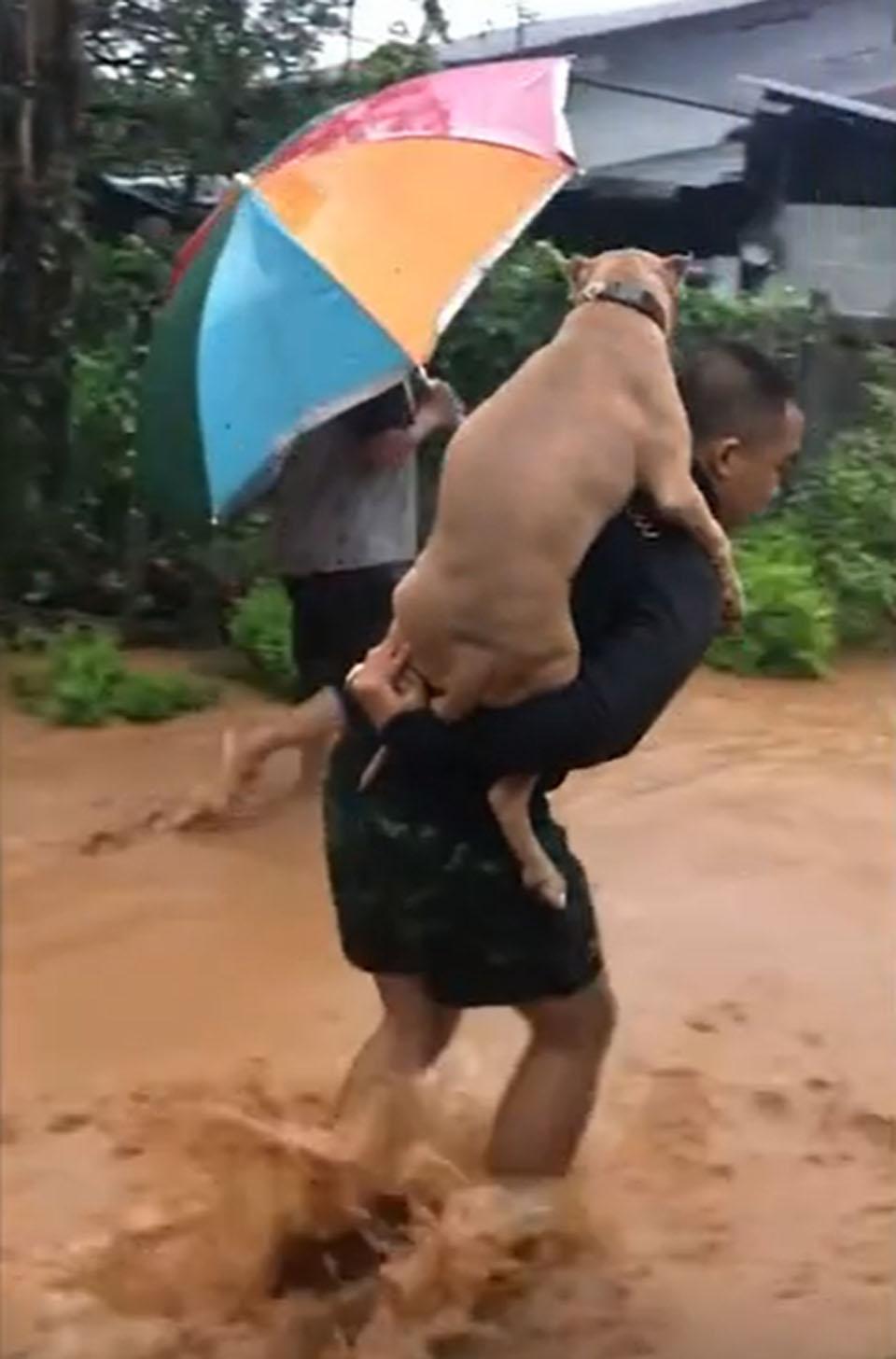 Hombre y su perrito en inundación