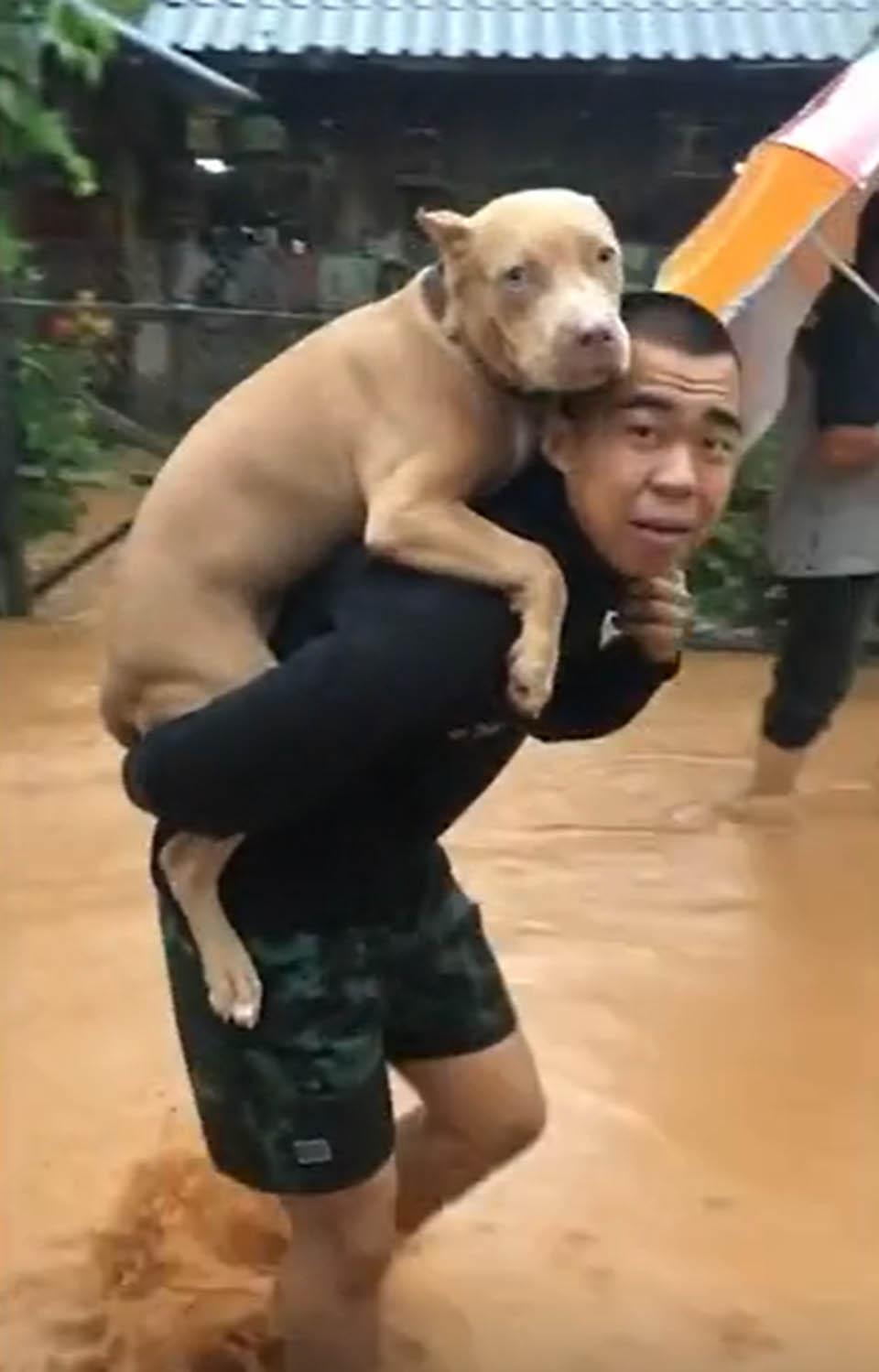 Hombre y su perrito