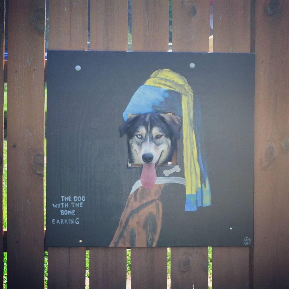 Perro se asoma por la cerca pintada