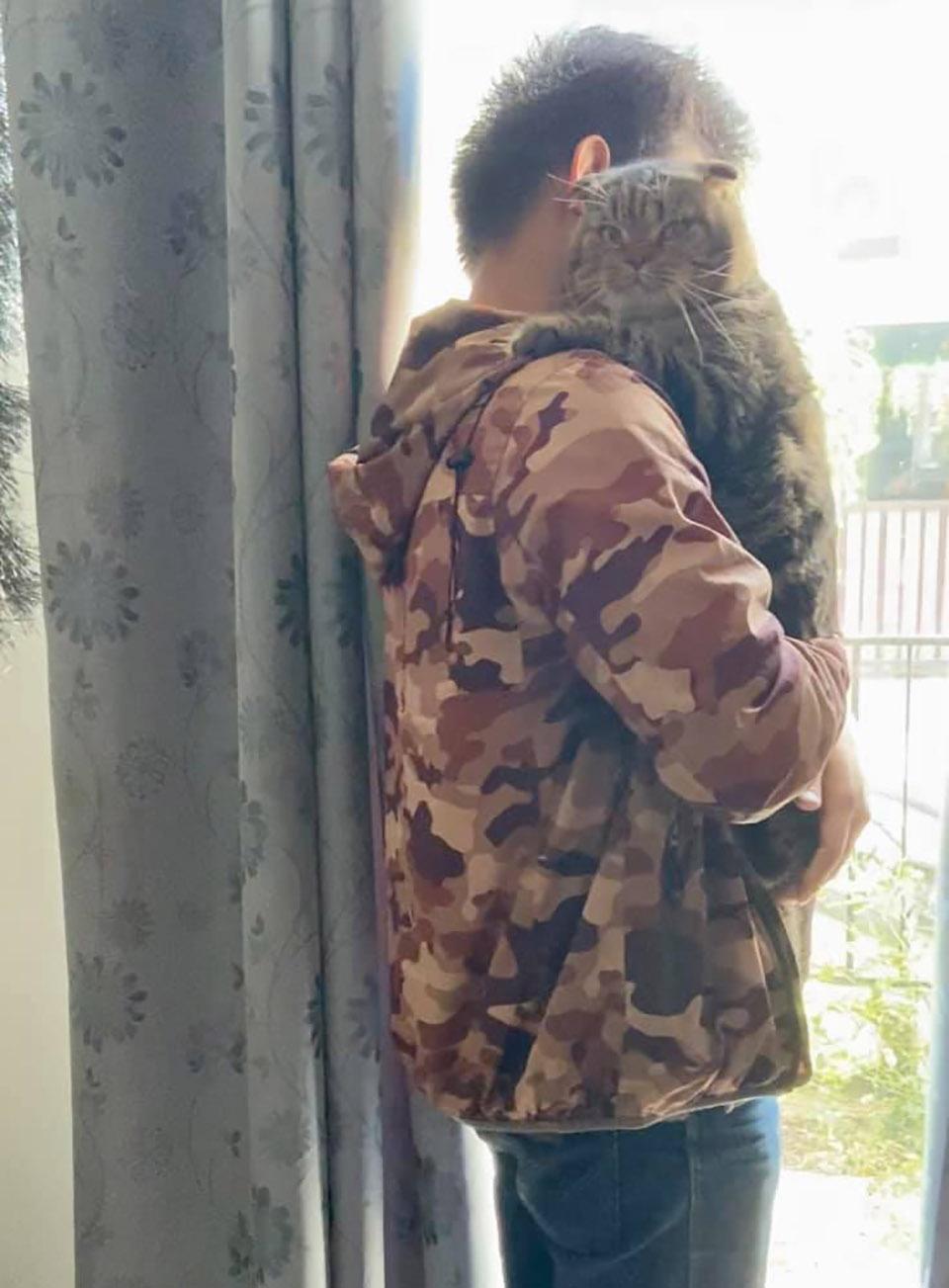 Gato y su humano