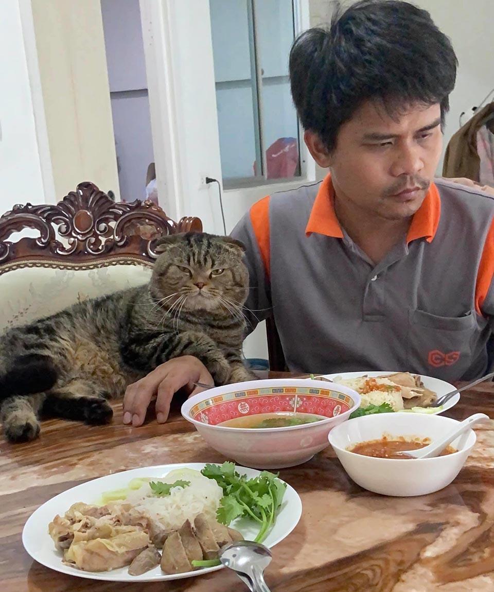 Hora de la cena
