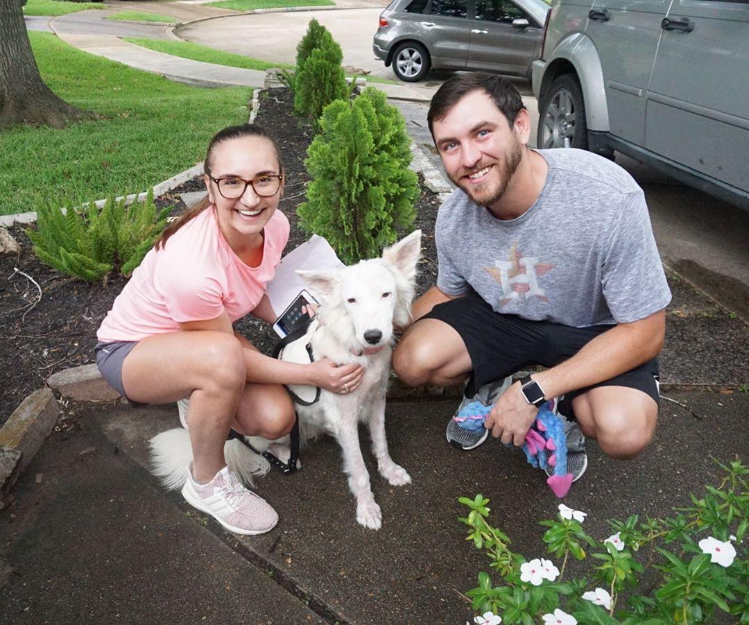 Perro y su nueva familia