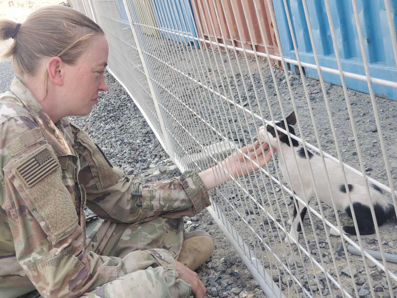 Soldado y dos gatitos