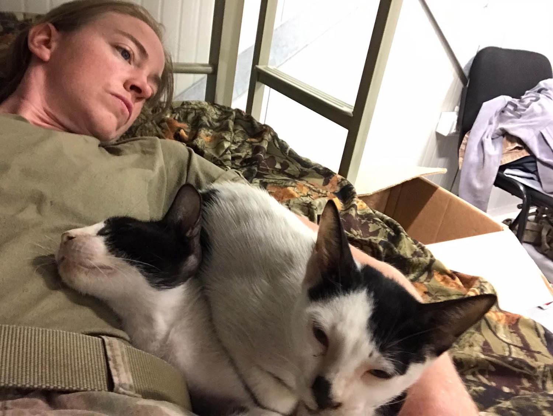 Soldado y sus gatos