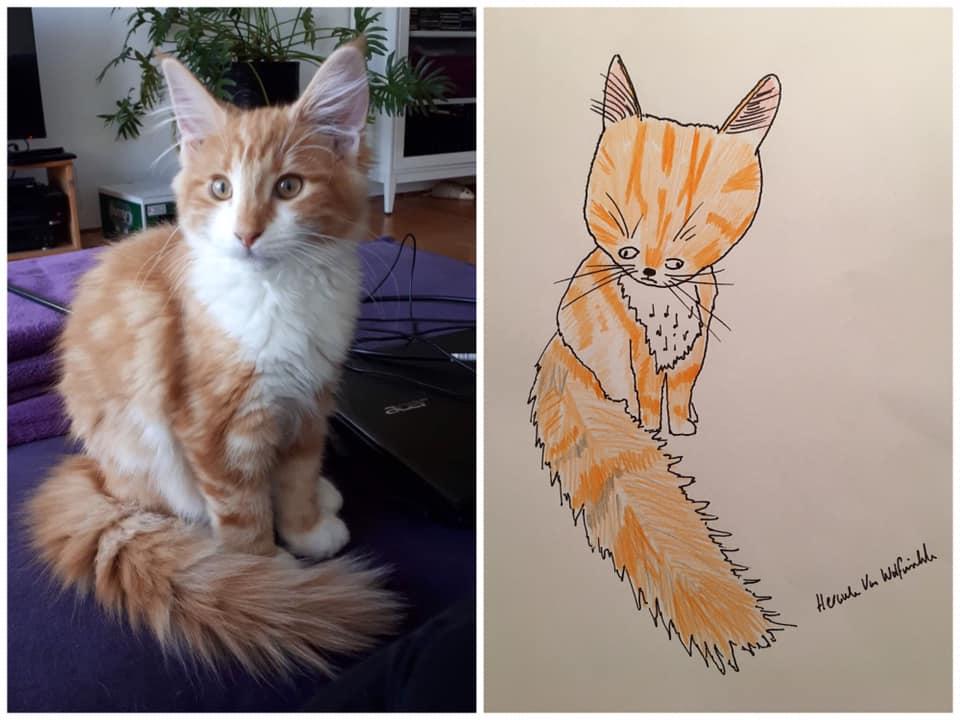 Gatito horrible retrato