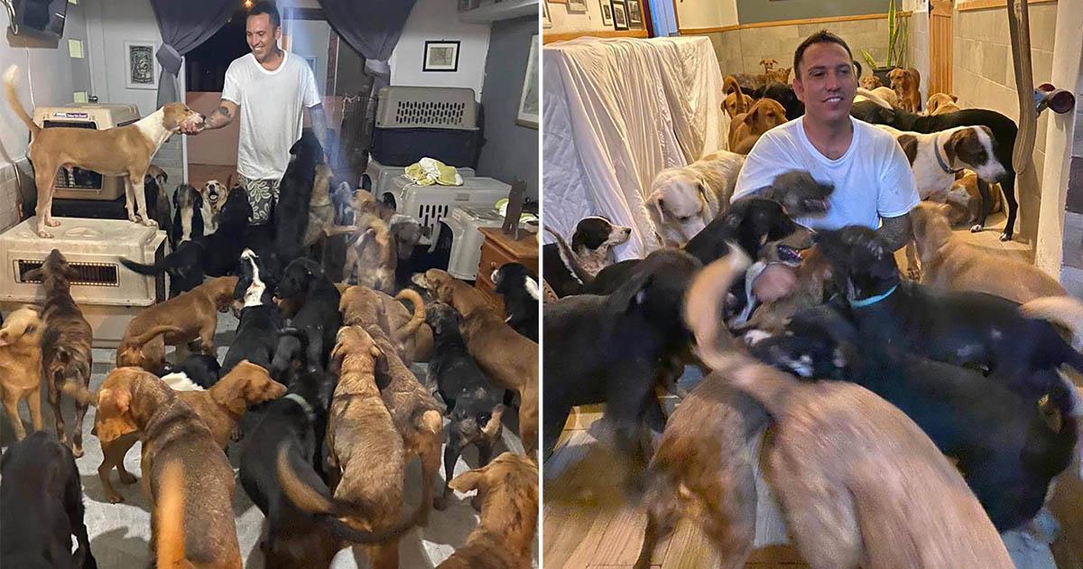 Hombre da refugio a 300 animales