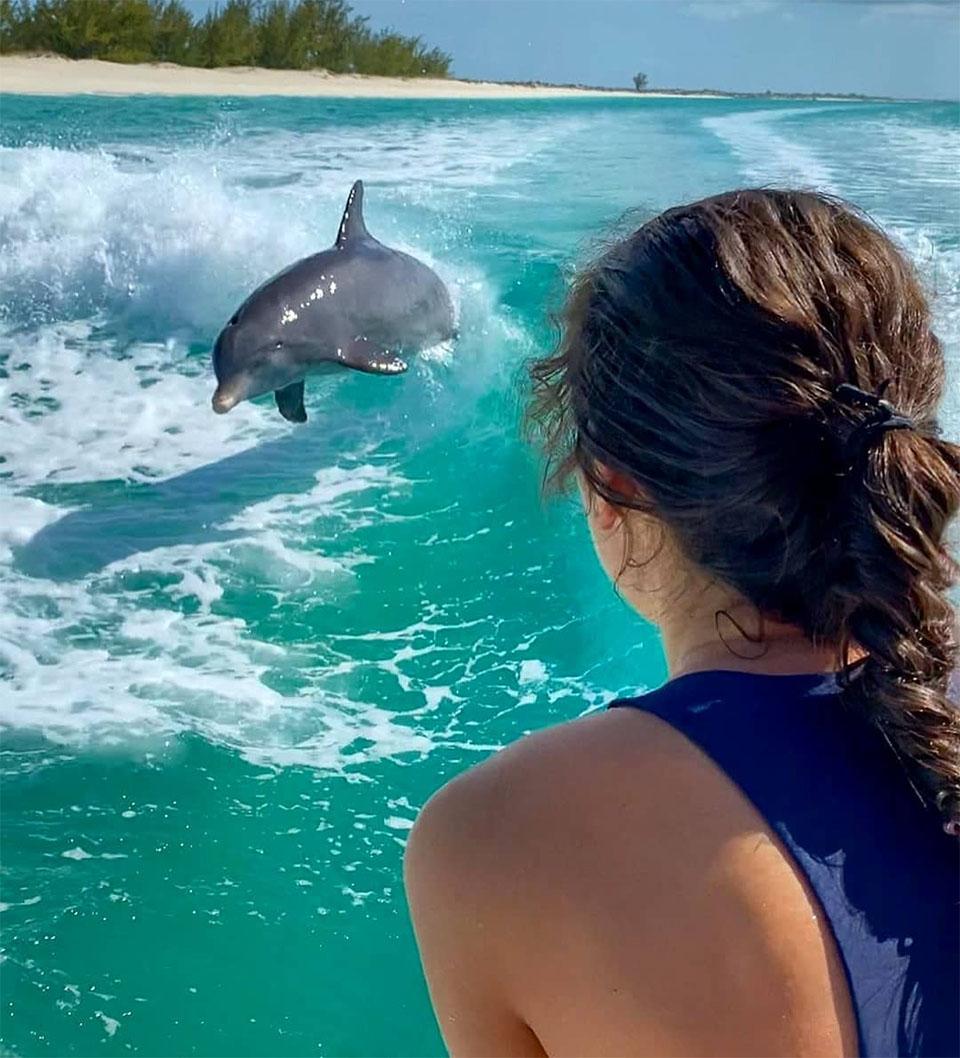 Jojo el delfín