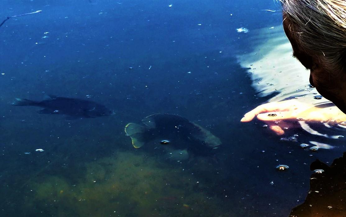 Mujer y su amigo pez