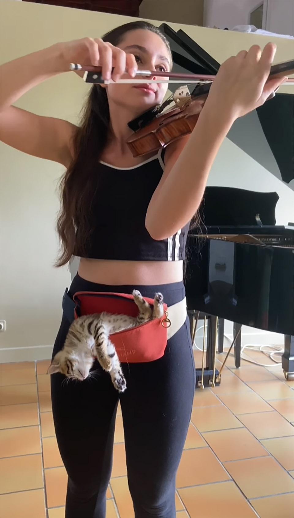 Violinista y su pequeño gato