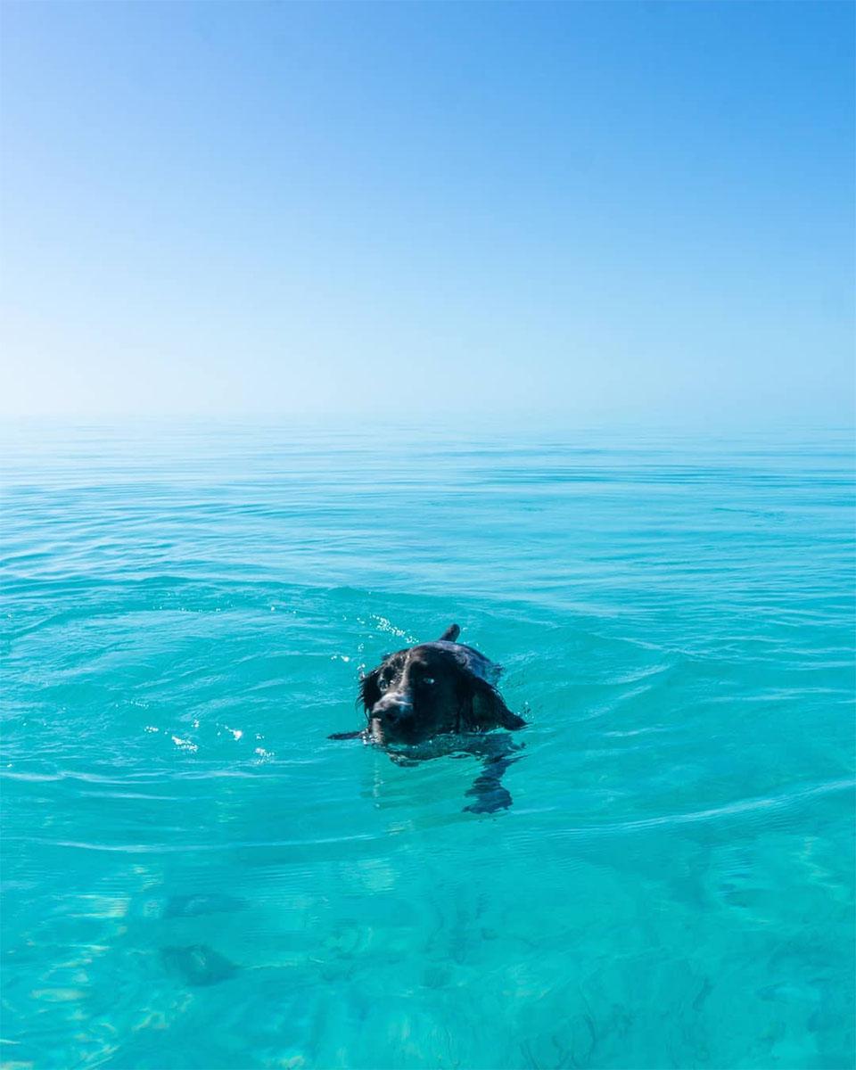 Zyzz en el mar