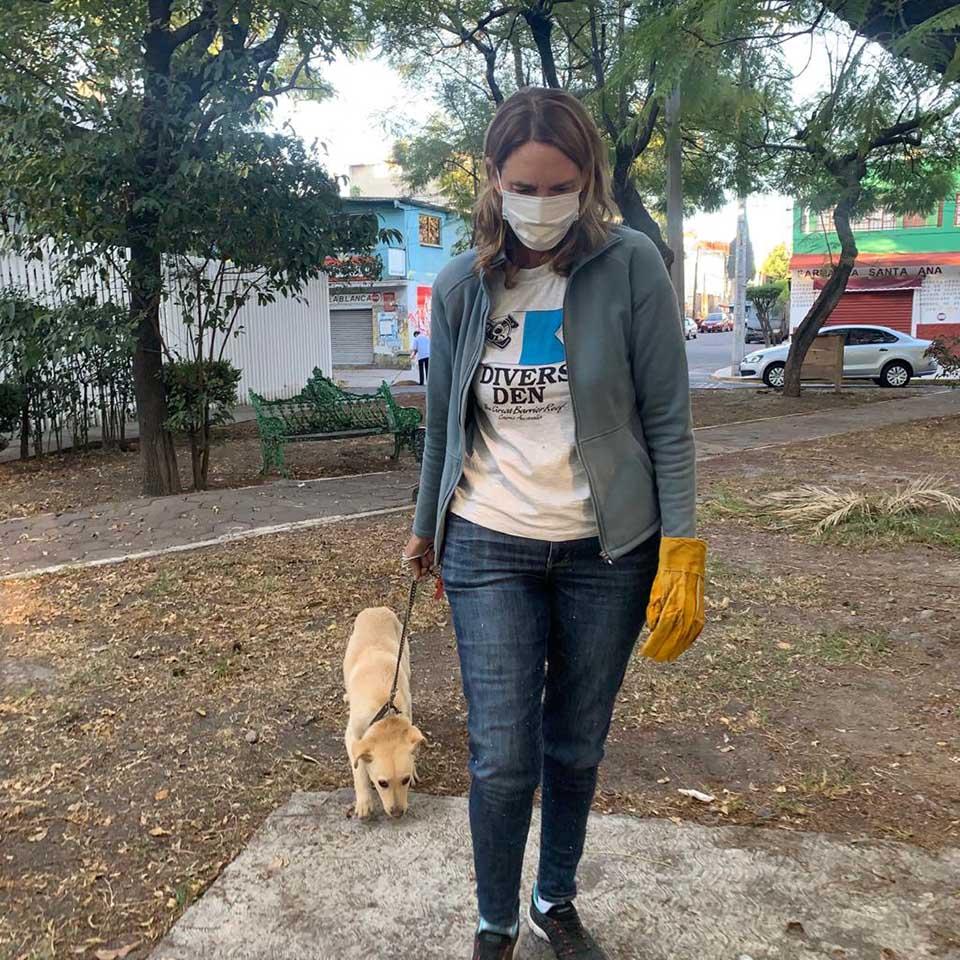 Cachorro dejado en la banca del parque