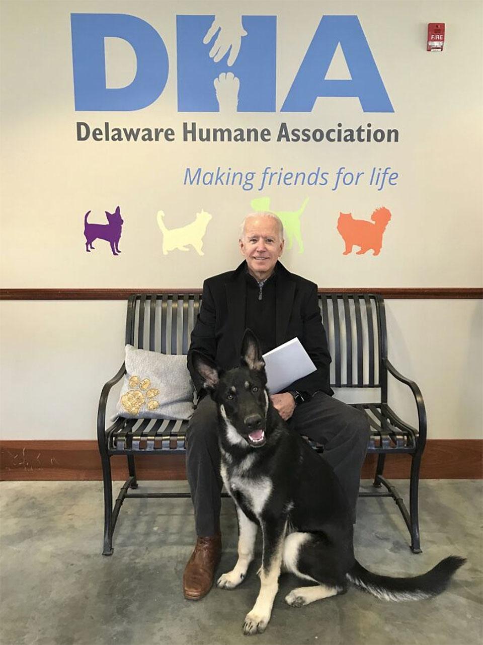 Major, primer perro rescatado