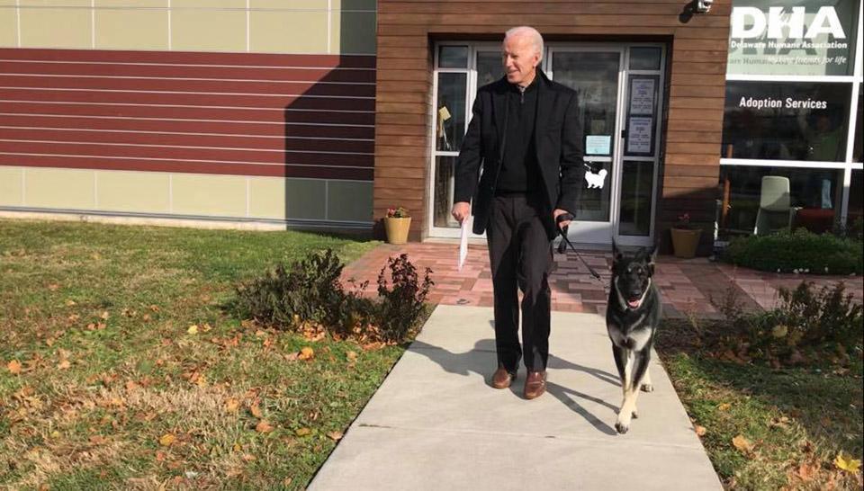 Primer perro rescatado, Major